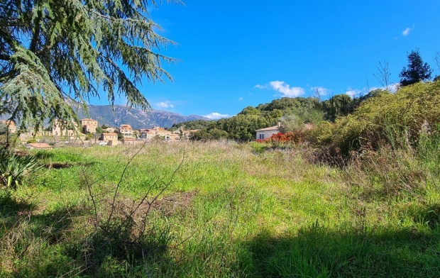 2A IMMOBILIER Ground | CAURO (20117) | 2 340 m2 | 205 000 €